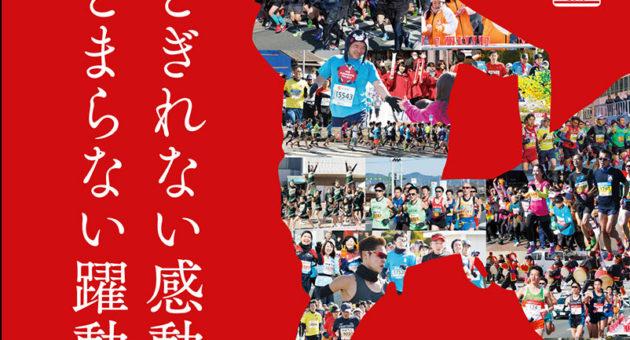 「熊本城マラソン2019」 参加ランナー募集締め切り迫る!